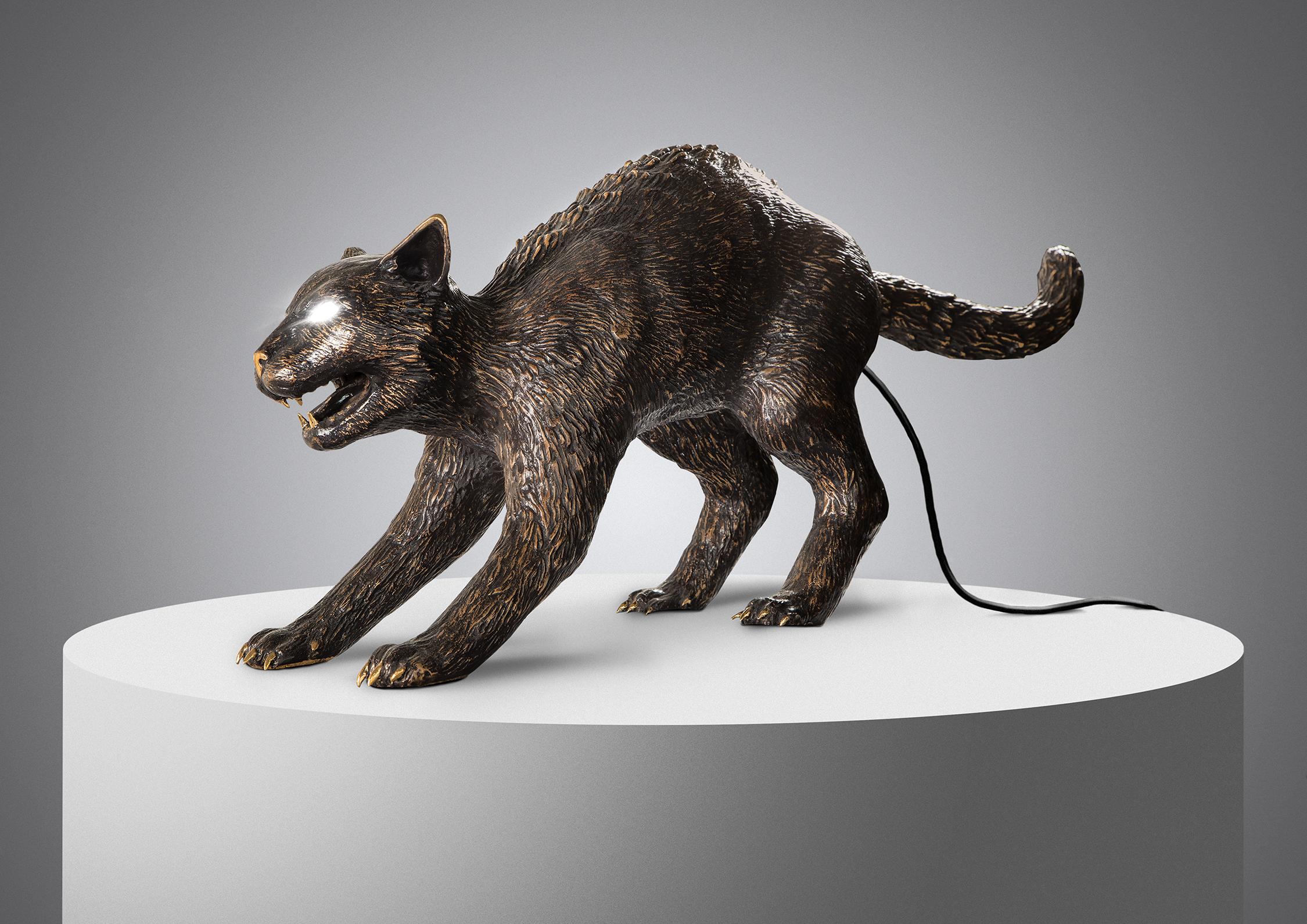 Studio-Cat-2021