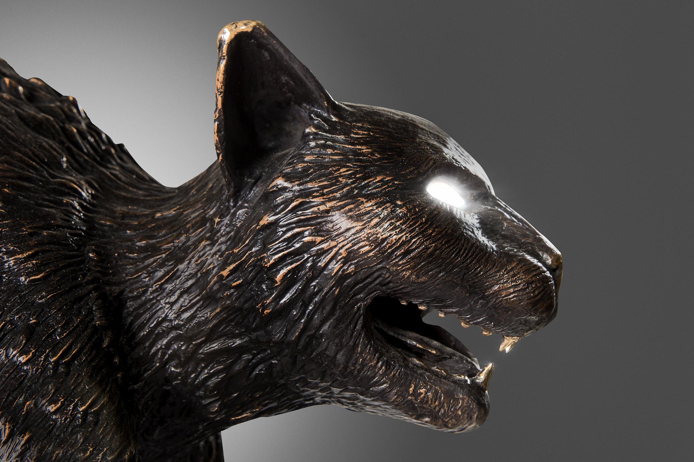 Studio-Cat-2021-detail-1